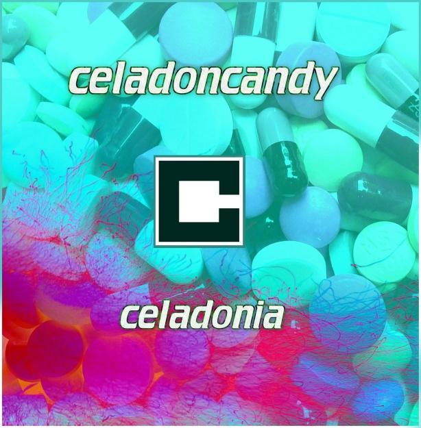 Celadon front 1462x1490